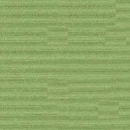 Cardstock - Lily Pond - CC220
